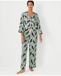 Ann Taylor Cat Pyjama Set - Green