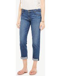 Ann Taylor Girlfriend Jeans - Blue