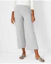 Ann Taylor The Petite Knit Wide Leg Crop Pant - Grey