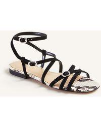 Ann Taylor Gabriel Snake Print Suede Sandals - Black