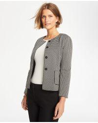 Ann Taylor Basketweave Knit Jacket - Black