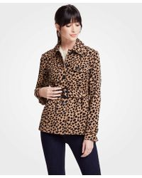 Ann Taylor - Petite Cheetah Dot Short Trench - Lyst