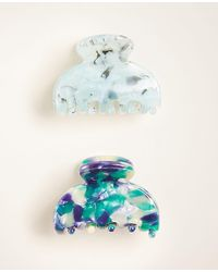 Ann Taylor Tortoiseshell Print Hair Clip Set - Blue