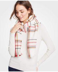 Ann Taylor - Plaid Blanket Scarf - Lyst