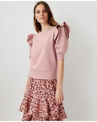 Ann Taylor Ruffle Puff Sleeve Sweatshirt - Pink