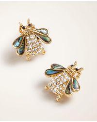 Ann Taylor Bee Stud Earrings - Metallic