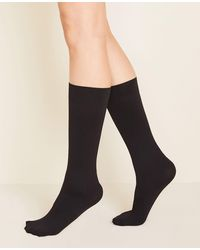 Ann Taylor Perfect Knee Highs - Black