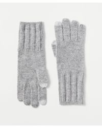 Ann Taylor Ribbed Cashmere Gloves - Grey