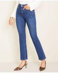 Ann Taylor Tall Curvy Sculpting Pocket High Rise Straight Leg Jeans In Indigo Wash - Blue