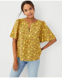 Ann Taylor Paisley Flutter Sleeve Popover - Yellow