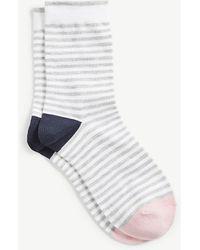 Ann Taylor   Colorblocked Stripe Trouser Socks   Lyst