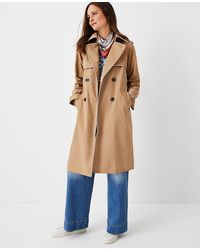 Ann Taylor Petite Tipped Twill Trench Coat - Natural