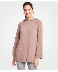 Ann Taylor - Petite Hoodie Sweater - Lyst