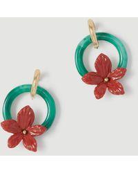 Ann Taylor Enamel Flower Circle Earrings - Green