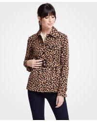 Ann Taylor - Cheetah Dot Short Trench - Lyst