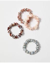 Ann Taylor Mixed Scrunchie Set - White
