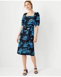 Ann Taylor Floral Toile Square Neck Shift Dress - Blue