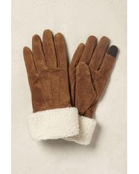 Anthropologie - Sheepskin Gloves - Lyst