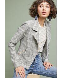 Cartonnier - Caitlin Knit Moto Jacket - Lyst