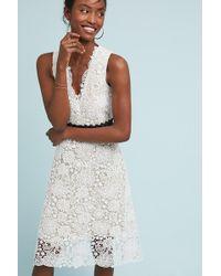 Donna Morgan - Krista Belted Petite Dress - Lyst