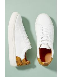 SELECTED - Snake Effect-trimmed Leather Trainers - Lyst