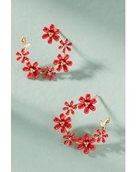 Anthropologie - Honolulu Mini Hoop Earrings - Lyst