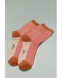 Becksöndergaard   Lurex Striped Socks   Lyst