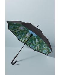 Fulton Forest-print Umbrella - Multicolour