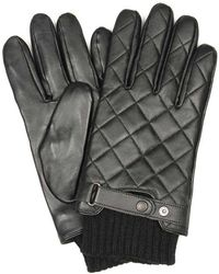 Barbour Gloves - Black