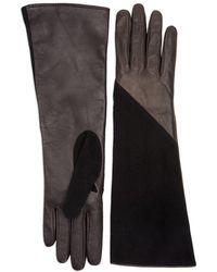 Aquatalia Leather And Suede Glove - Black