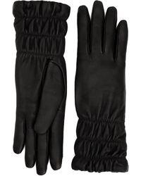 Aquatalia Mid Length Glove - Black