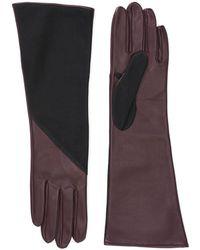 Aquatalia Leather And Suede Glove - Multicolour
