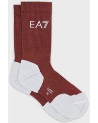 Emporio Armani Socks - Brown