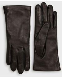 Emporio Armani Nappa Leather Gloves With Logo Patch - Black
