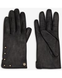 Armani Exchange Leather Gloves With Small Studs - Black