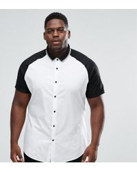 ASOS - Plus Skinny Shirt With Raglan Sleeves And Rib Collar - Lyst