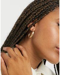 AllSaints Серьги-кольца С Перьевым Дизайном -медный - Коричневый