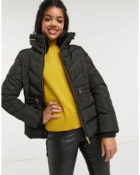 Oasis Belted Padded Jacket - Black