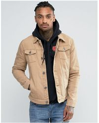 Liquor N Poker Светло-коричневая Джинсовая Куртка -коричневый Цвет