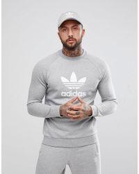 adidas Originals Adicolor Trefoil Logo Sweat In Grey Cy4573 - Gray