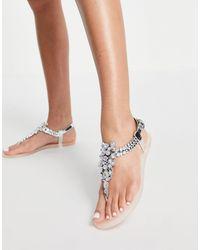 Miss Kg Dory Bling Toepost Jelly Flat Sandals - Multicolour