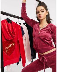 Juicy Couture Black Label - Robertson - Hoodie en velours luxueux avec pendentif - Grenade - Violet
