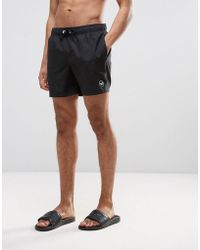 Hollister - Guard Swim Shorts Solid Seagull Logo In Black - Lyst