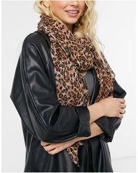 Miss Selfridge Длинный Шарф С Леопардовым Принтом -коричневый Цвет