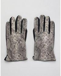 ASOS Kunstlederhandschuhe mit Schlangenlederdesign - Mehrfarbig
