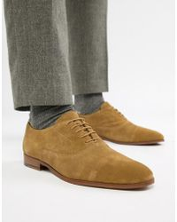 KG by Kurt Geiger - Kg By Kurt Geiger Oxford Shoes In Tan Suede - Lyst