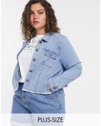 Simply Be Stripe Denim Jacket - Blue