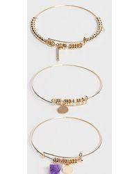 ALDO Padriwiel Bracelets With Amethyst In Gold - Metallic