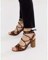 Miss Kg Leopard Tie Leg Gladiator Block Heeled Sandal - Multicolour