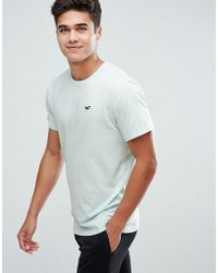 Hollister - Crew T-shirt Slim Fit Core Icon Logo In Turquoise - Lyst